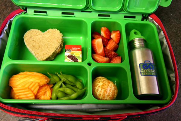 Tiffin Food Container Rental