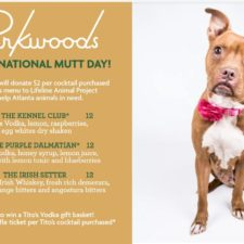 Celebrate National Mutt Day at Parkwoods!