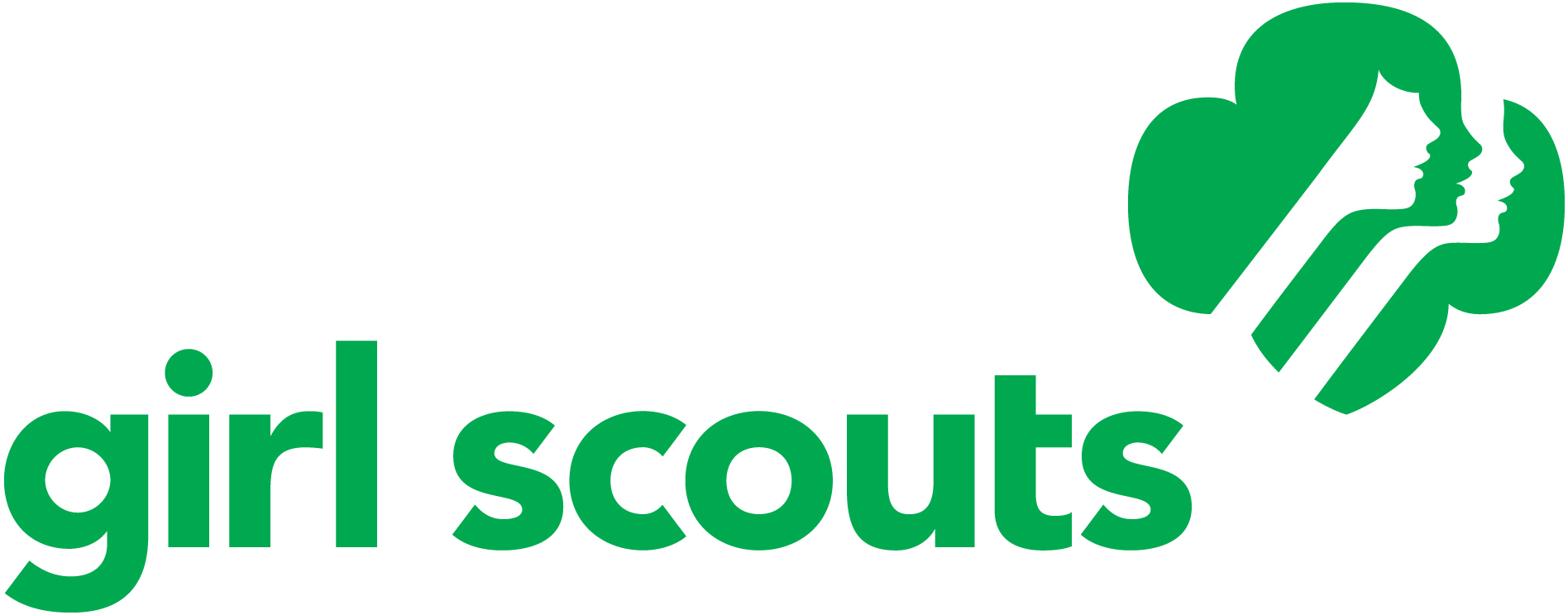Girl Scout Troop Organizing Meeting