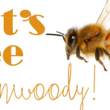 Let's Bee Dunwoody!