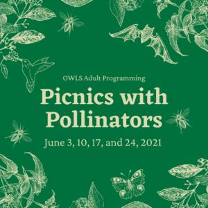OWLS Adult Programming: Picnics With Pollinators